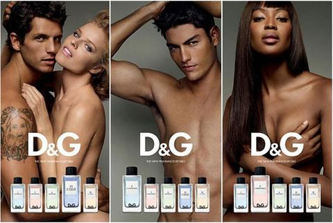 The D&G Anthology Collection 2009-2010